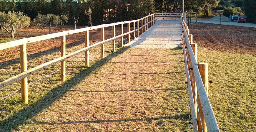 Créer un cadre de vie « au bonheur de mes chevaux »