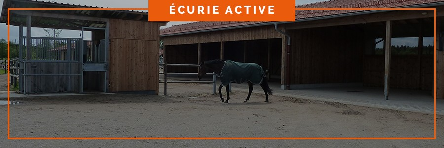 dalle de stabilisation pour curage mécanisé dans une écurie active pour le bien être des chevaux
