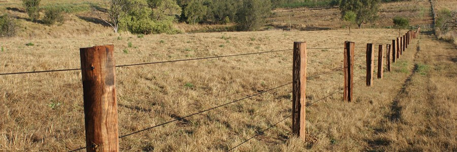 clôture permanente concept Hors'Braid tresse noire