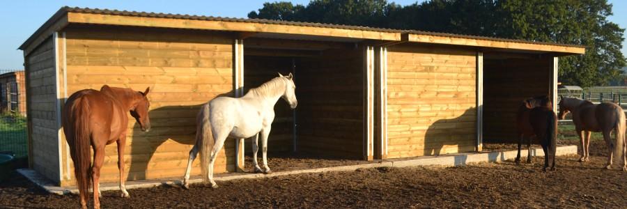 Abri bois pour chevaux modèle Confort