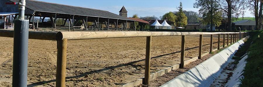 Lice chevaux Classic