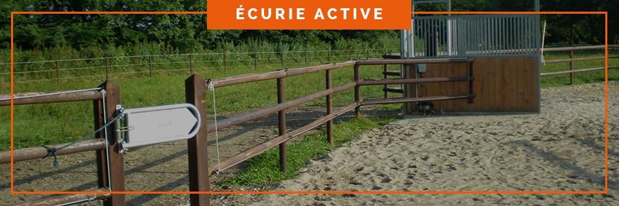 gestion des accès des chevaux pour l'accès au fourrage et à l'herbe dans une écurie active