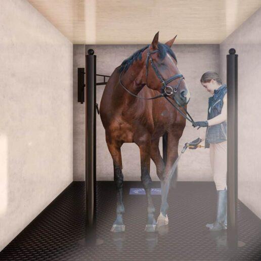 Douche pour chevaux