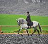 sol-equestre-menu